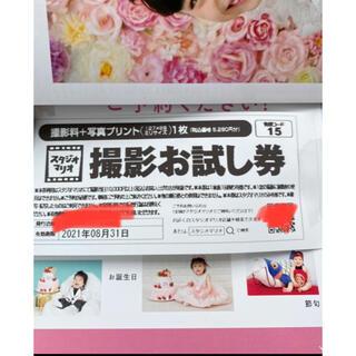 カメラのキタムラ スタジオマリオ 撮影お試し券 5280円分(ショッピング)
