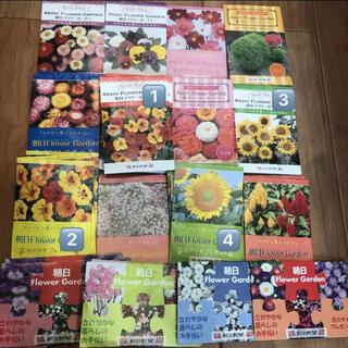 花の種 よりどり4袋 お好きなものをお選びください サカタのタネ