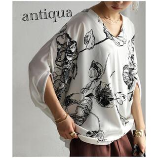 antiqua - 【antiqua】ドルマントップス