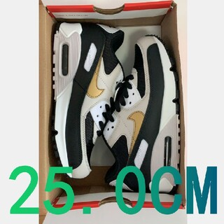 【25.0CM】特別セール!Nike Air Max90 Essential#6