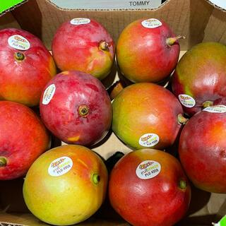 コストコ - コストコ アップルマンゴー 4kg