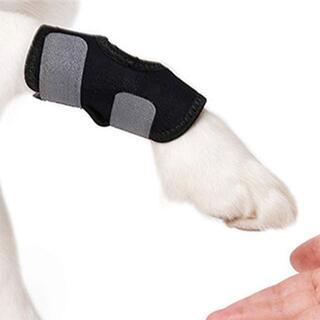 犬用関節プロテクター 犬用膝サポーター 足が短い犬に適用 舐め防止 関節保護(ソファカバー)
