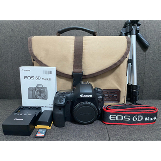 Canon - 【値引中】Canon EOS 6D MARK2 ボディ(SDカード付)防湿庫保管