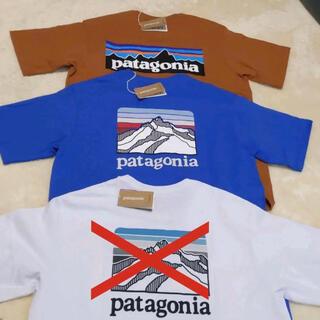 パタゴニア(patagonia)の新品!!パタゴニアTシャツ S 2枚セット(Tシャツ/カットソー(半袖/袖なし))
