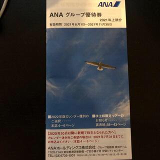 エーエヌエー(ゼンニッポンクウユ)(ANA(全日本空輸))のANA 株主優待 グループ優待券 2021年上期分(その他)