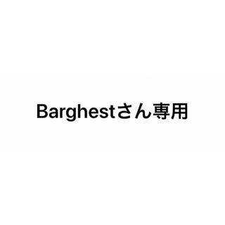 Balenciaga - BALENCIAGAパーカー