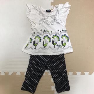 クレードスコープ(kladskap)の90センチ◆半袖Tシャツ&ズボン◆クレードスコープ(パンツ/スパッツ)