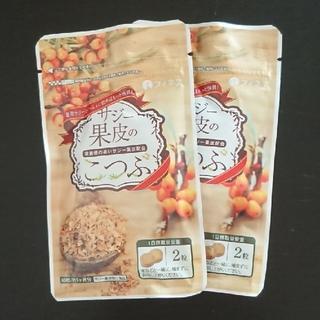 サジー果皮加工食品/新品・未開封2袋セット(ビタミン)