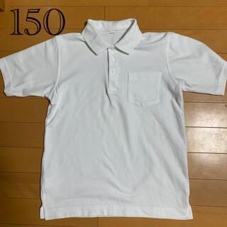 ポロシャツ 白 150