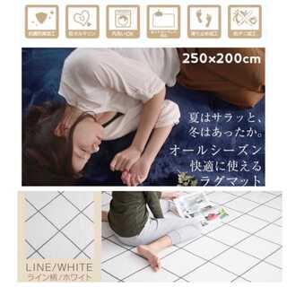 ライン柄/ホワイト/Lサイズ/250×200cm/ラグ/カーペット/絨毯■(ラグ)