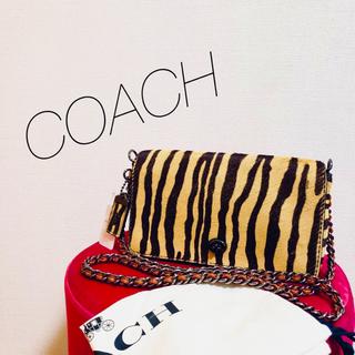 コーチ(COACH)のCOACH ディンキー 激レア!!(ショルダーバッグ)