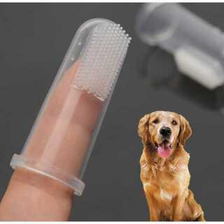 新品★2個セット  犬歯ブラシ  指歯ブラシ  猫ハミガキ(犬)
