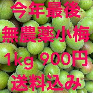 自然農法 完全無農薬 小梅 1kg