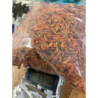 ライオンズテール 乾燥花弁 オーガニック 11g(ドライフラワー)