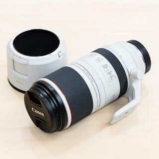 Canon - rf100-500mm f4.5-7.1 l is usm