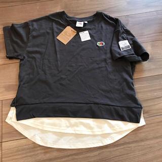 THE NORTH FACE - 新品 フルーツオブザルーム  重ね着風Tシャツ 半袖