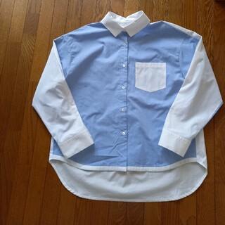 新品CON ANIMAMシャツ(ツートンカラー)新品(シャツ/ブラウス(長袖/七分))