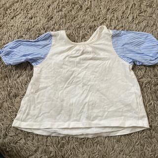 ハッシュアッシュ(HusHush)の半袖 hushush 90センチ(Tシャツ/カットソー)