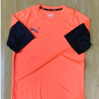 プーマ(PUMA)のPUMA 半袖プラクティシャツ(シャツ)