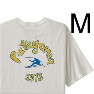 patagonia - パタゴニア ビジョンミッション オーガニックコットンTシャツ 新品 M