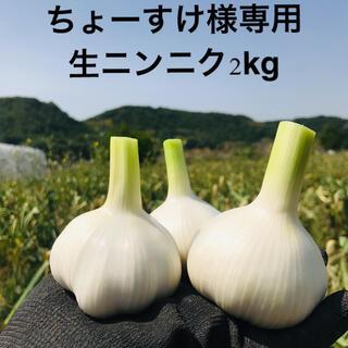 ちょー助様専用 生ニンニク2kg リピ割(野菜)