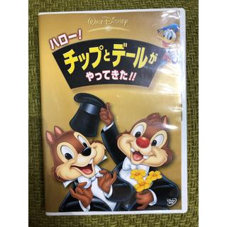 チップアンドデール(チップ&デール)のハロー!チップとデールがやってきた!! DVD Disney ディズニー(キッズ/ファミリー)