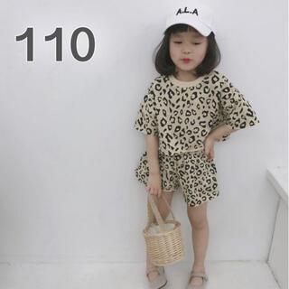 アニマル柄 セットアップ 110 半袖 ズボン ヒョウ柄 ベージュ 女の子 韓国