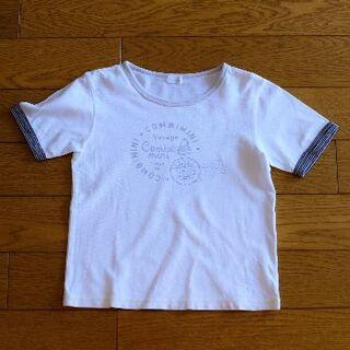 コンビミニ(Combi mini)のコンビミニ★ポロシャツ生地コットンTシャツ/120/ホワイト(Tシャツ/カットソー)