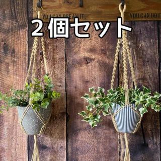 麻紐 プラントハンガー 2個セット No.56(インテリア雑貨)