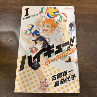 ハイキュ-!!ショ-セツバン!! 1〜4(少年漫画)