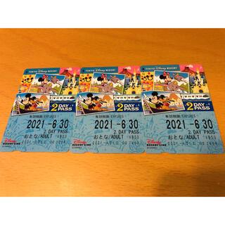 ディズニー(Disney)のディズニーリゾートライン 2day pass✨(遊園地/テーマパーク)