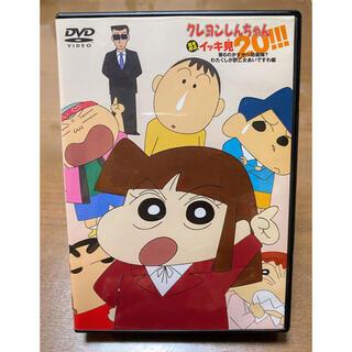 DVD  クレヨンしんちゃん  イッキ見 わたくしが酢乙女あいですわ編(アニメ)