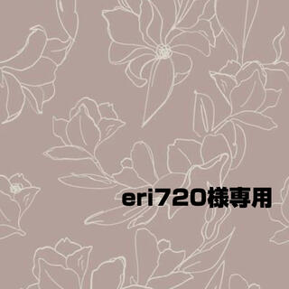 eri710様専用(その他)
