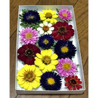 y④  銀の紫陽花が作ったアスターとジニアのドライフラワーです(ドライフラワー)