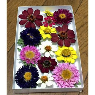 y⑤ 銀の紫陽花が作ったアスターとジニアのドライフラワーです(ドライフラワー)