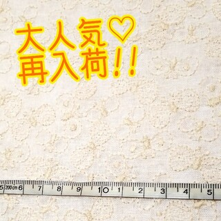 【刺繍-12】刺繍生地 コットンリネン ちょうちょ 蝶   ハンドメイド(生地/糸)