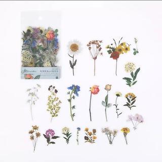 新品 シールステッカー 花 植物 コラージュ おすそ分けファイル ジャーナル素材(シール)