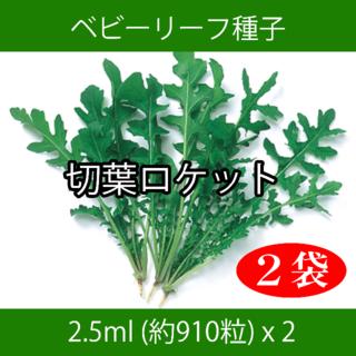 ベビーリーフ種子 B-31 切葉ロケット 2.5ml 約910粒 x 2袋(野菜)