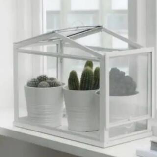 IKEA - 新品 IKEAイケア SOCKER ソッケル 温室ケース 室内屋外用