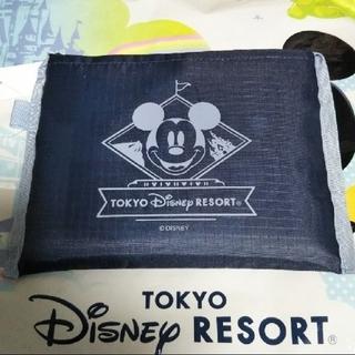ディズニー(Disney)の【新作】ディズニー エコバッグ 大サイズ(エコバッグ)