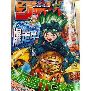 シュウエイシャ(集英社)の週刊少年ジャンプ 24(漫画雑誌)