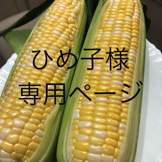 ひめ子様専用ページ とうもろこし(野菜)