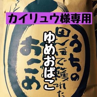 《カイリュウ様専用》令和2年度産ゆめおばこ 玄米10kg(米/穀物)