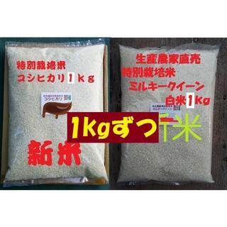 ★新米★[白米]特別栽培米コシヒカリとミルキークイーン1kgづつセット減農薬栽培(米/穀物)