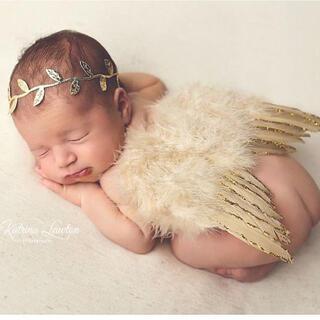天使の羽&リーフヘッドドレスセット  ベビー 記念写真 (その他)