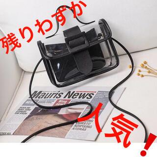 ザラ(ZARA)のPVCバッグ ブラック ショルダーバッグ 透明バッグ クリアバッグ 韓国 春 夏(ショルダーバッグ)