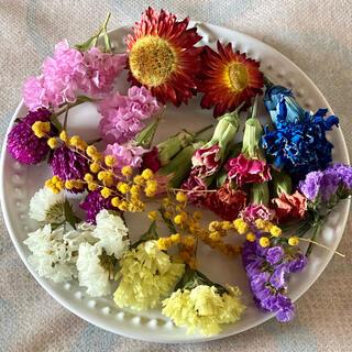 ①ドライフラワー花材セット(ドライフラワー)