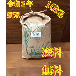令和2年度産 新米 玄米ヒノヒカリ5kg(米/穀物)
