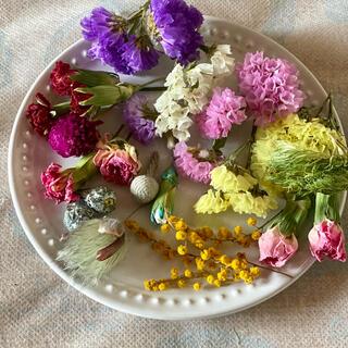 ②ドライフラワー花材セット(ドライフラワー)