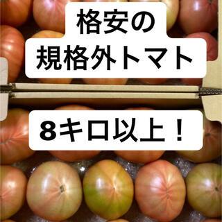 ハウストマト 規格外B品 8キロ以上
